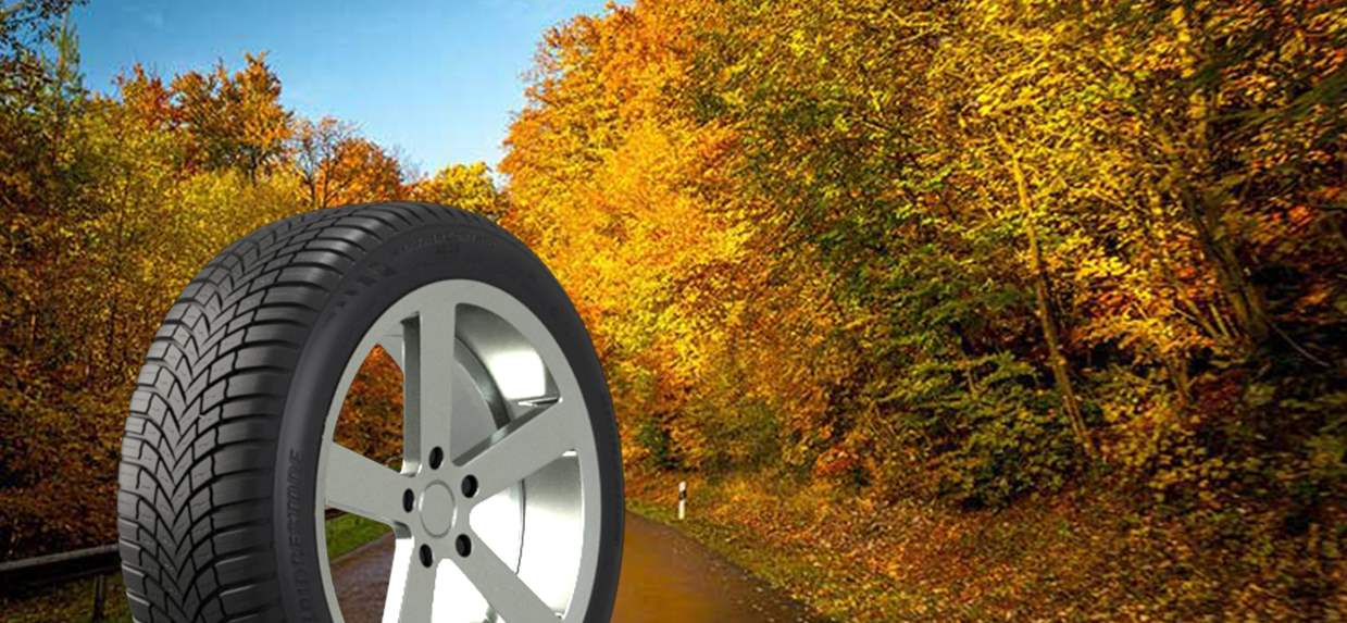 Premium Touring All Season Tire | Weather Control A005